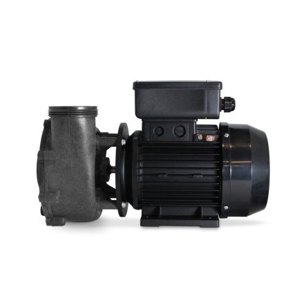 FLO-MASTER XP2E CE SERIES, 2HP, 230 V, 50HZ